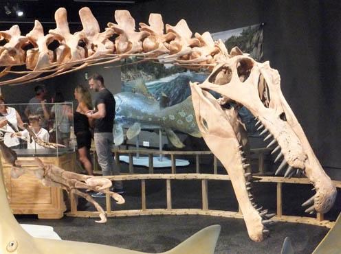 spinosaurus-2