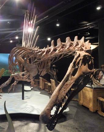spinosaurus-6