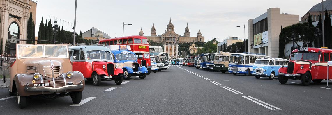 bus-rally