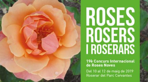 2019-concurso de rosas